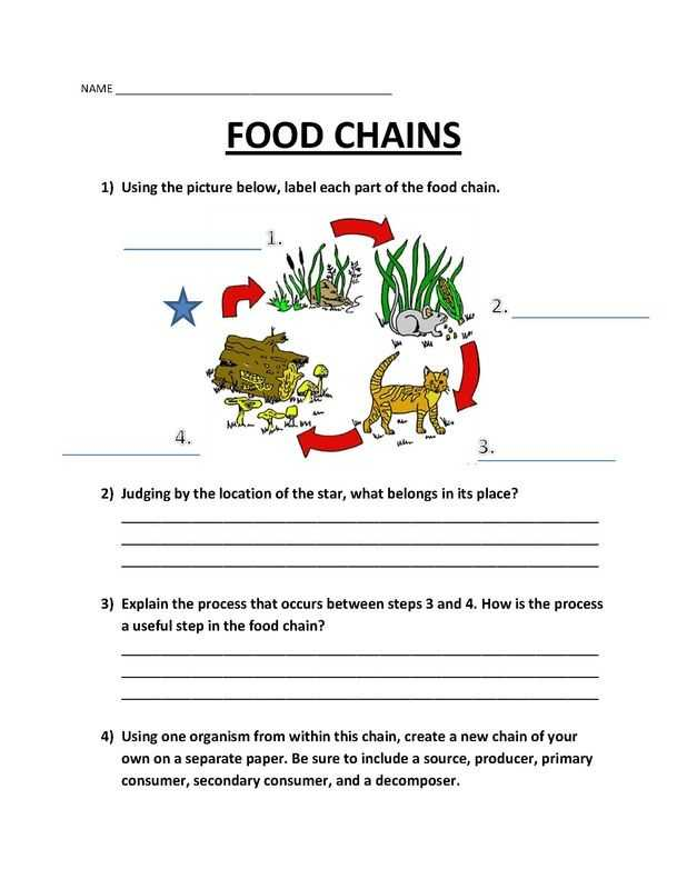 Producer Consumer Decomposer Worksheet as Well as Picture Worksheets Pinterest