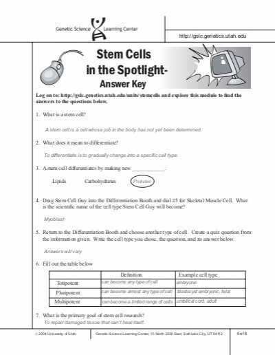 Protein Synthesis Webquest Worksheet Answer Key Also H