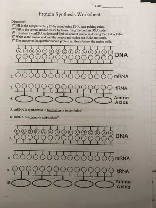 Say It with Dna Protein Synthesis Worksheet Answers or Worksheets 49 Unique Transcription and Translation Worksheet Answers