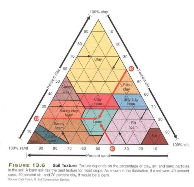 Soil Texture Triangle Worksheet with Diagram Of soil Textures Hobbies = Enrichment Pinterest