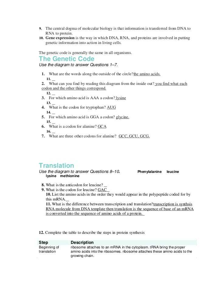 Transcription and Translation Worksheet Answers or Best Transcription and Translation Worksheet Answers Lovely Dna