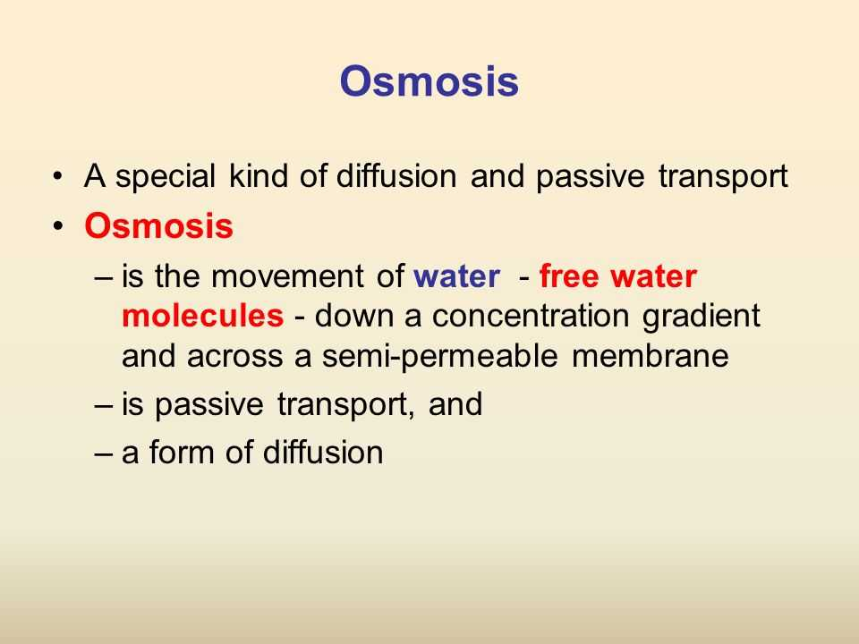 Transport Across Membranes Worksheet Answers together with Worksheets 48 Awesome Diffusion and Osmosis Worksheet Answers Full