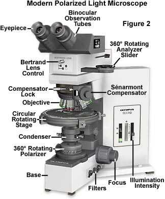 Using A Compound Light Microscope Worksheet together with Polarized Light Microscopy Microscope Configuration