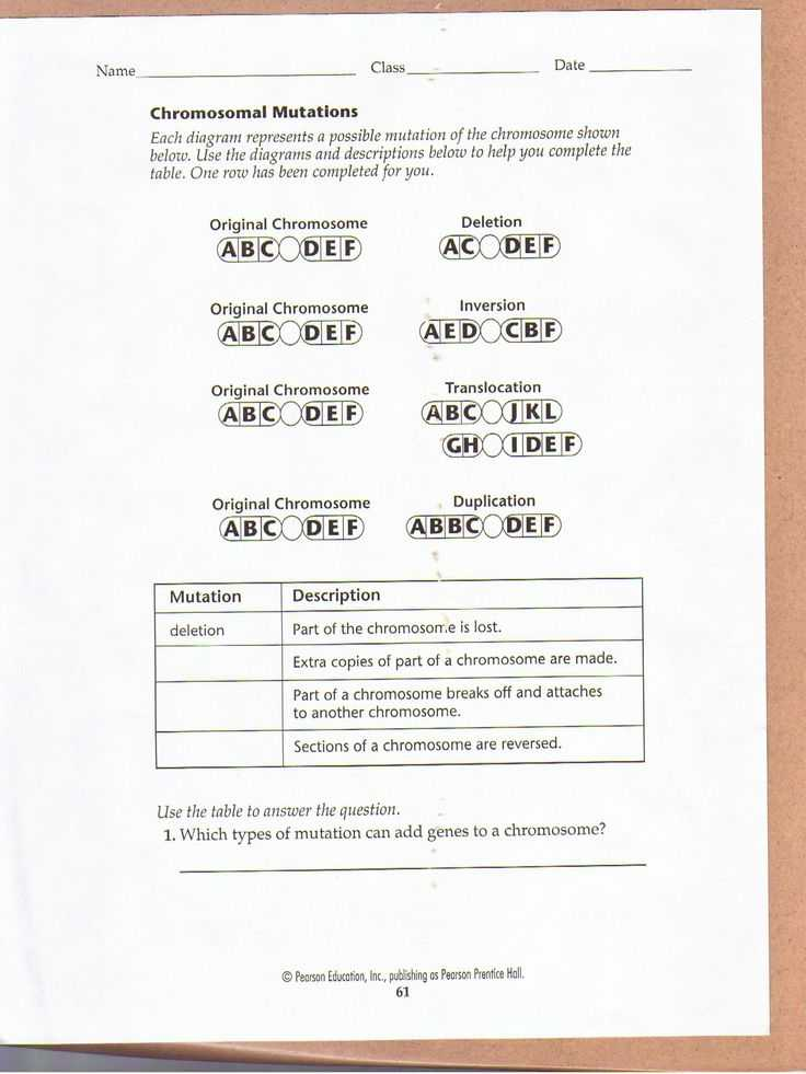 Worksheet Mutations Practice or 263 Best Genetics Images On Pinterest