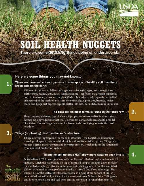 Accompanies soil Conservation Student Worksheet together with 16 Best soil Keeping It Healthy & soil Tidbits Images On Pinterest