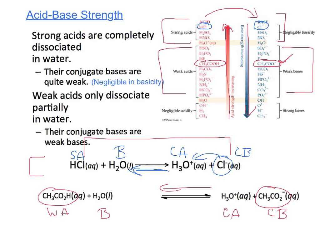 Acids Bases and Salts Worksheet Also Honors Chem 54 Acid Base Equilibriaautoionization Conjuga