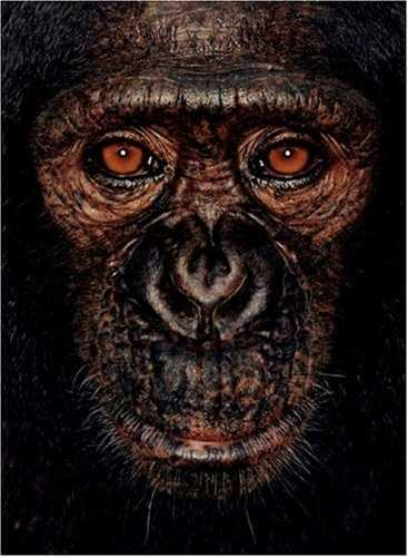 Among the Wild Chimpanzees Worksheet Answers and 13 Best Chimpanzees Images On Pinterest