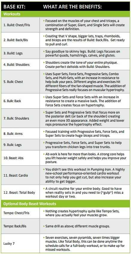 Body Beast Cardio Worksheet Along with Super Suma Supplement Muscle Growth Powerful Adaptogen Beachbody