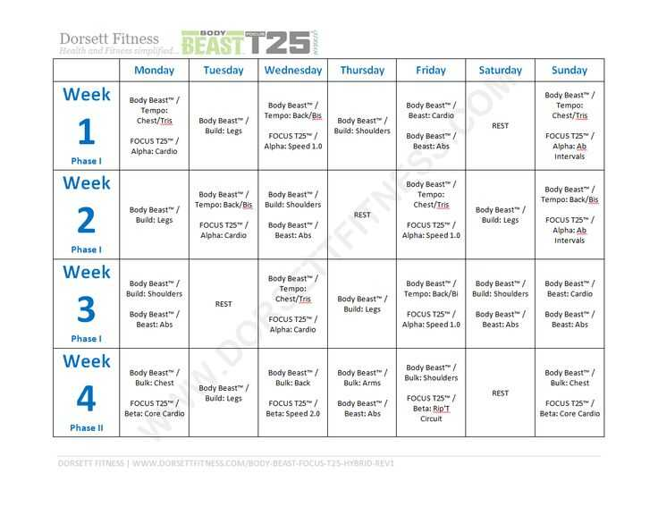 Body Beast Cardio Worksheet together with 19 Best T25 Focus Images On Pinterest