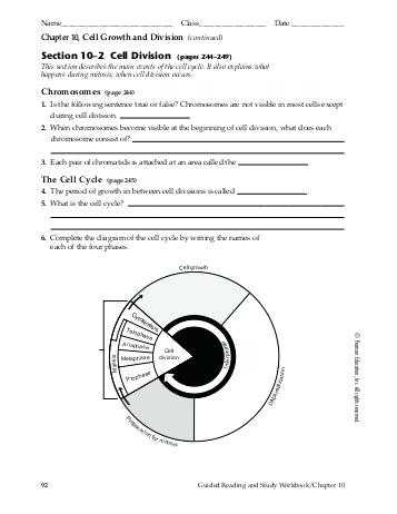 Chapter 10 Cell Growth and Division Worksheet Answer Key and Cell Division Worksheet Answers Animal Cell Mitosis Diagrams