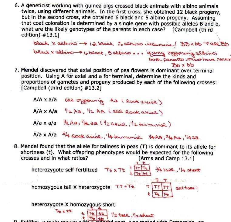 Daffynition Decoder Worksheet Answers or 25 Inspirational Daffynition Decoder Worksheet Answers Gallery