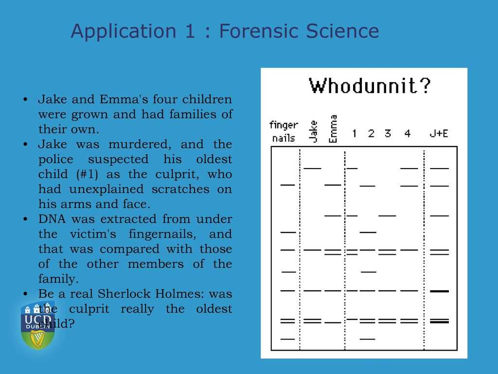 Dna and forensics Worksheet Answers or Introduction to Chromatography Ppt