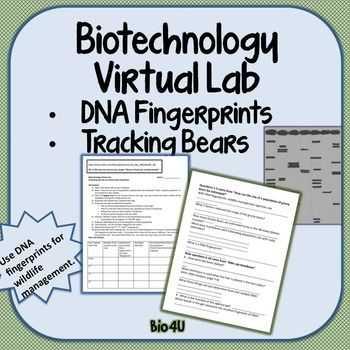 Dna Profiling Worksheet as Well as Dna Fingerprinting Worksheet forensic Science Fingerprint Activity