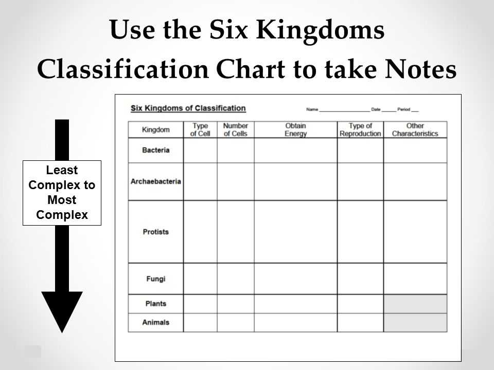 Domains and Kingdoms Worksheet and Six Kingdoms Classification Chart Thinkpawsitive