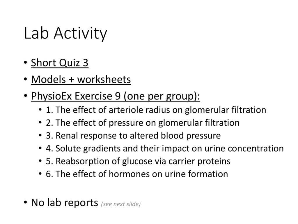Factors Worksheet And Free Worksheets Library Download