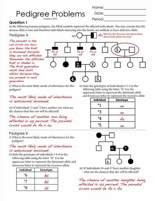 Genetics Worksheet Middle School together with Genetics Pedigree Worksheet