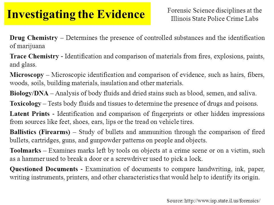 Hair and Fiber Evidence Worksheet Answers or Honors forensic Science Ppt