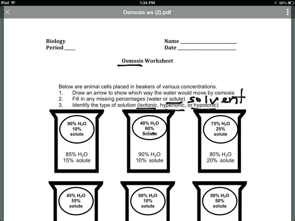 Hand Washing Worksheets Along with Osmosis Worksheet Answer Key the Best Worksheets Image Colle