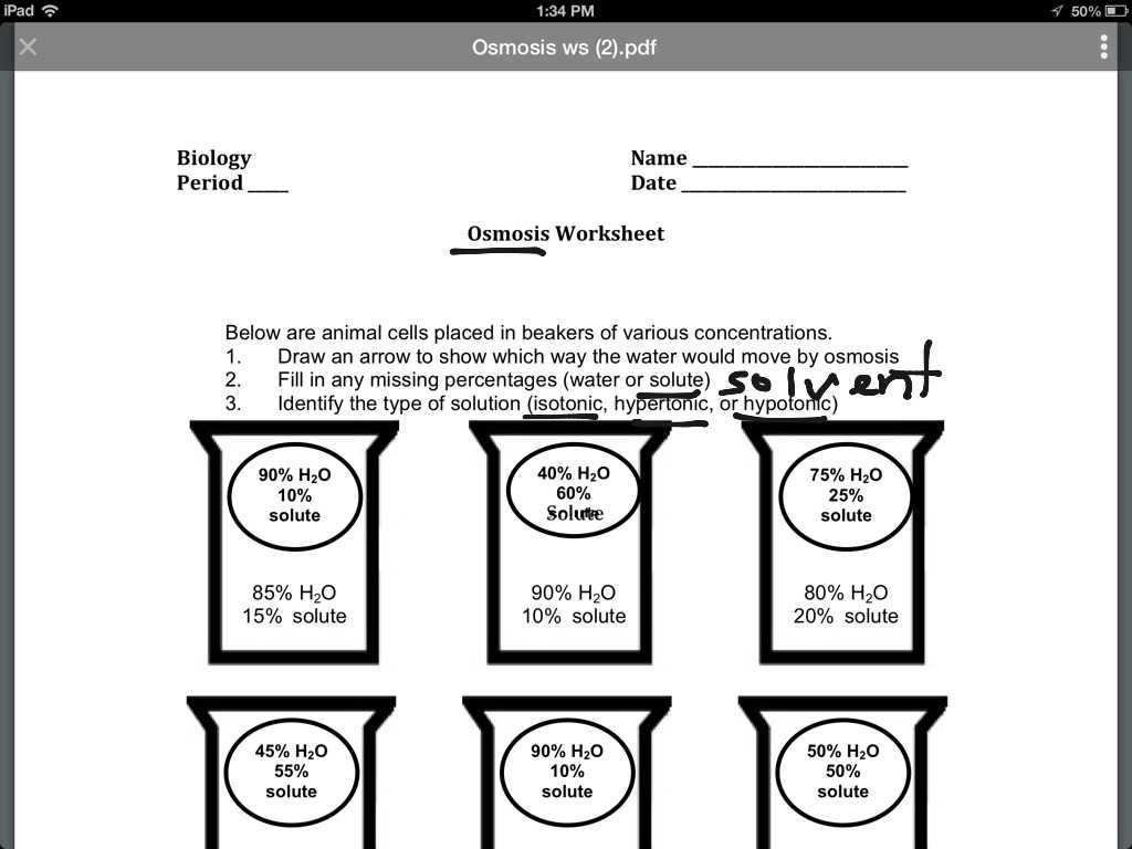 Osmosis and tonicity Worksheet Answers as Well as Physical
