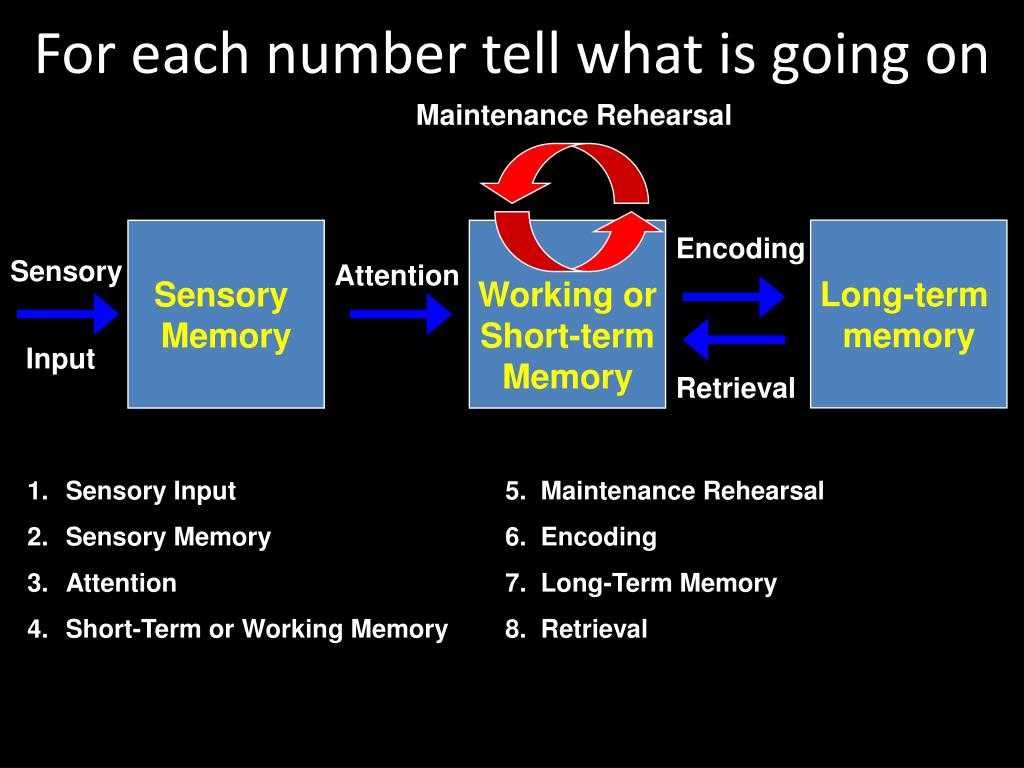 Stages Of Change In Recovery Worksheets as Well as Describe the Stages Of Memory Bing Images