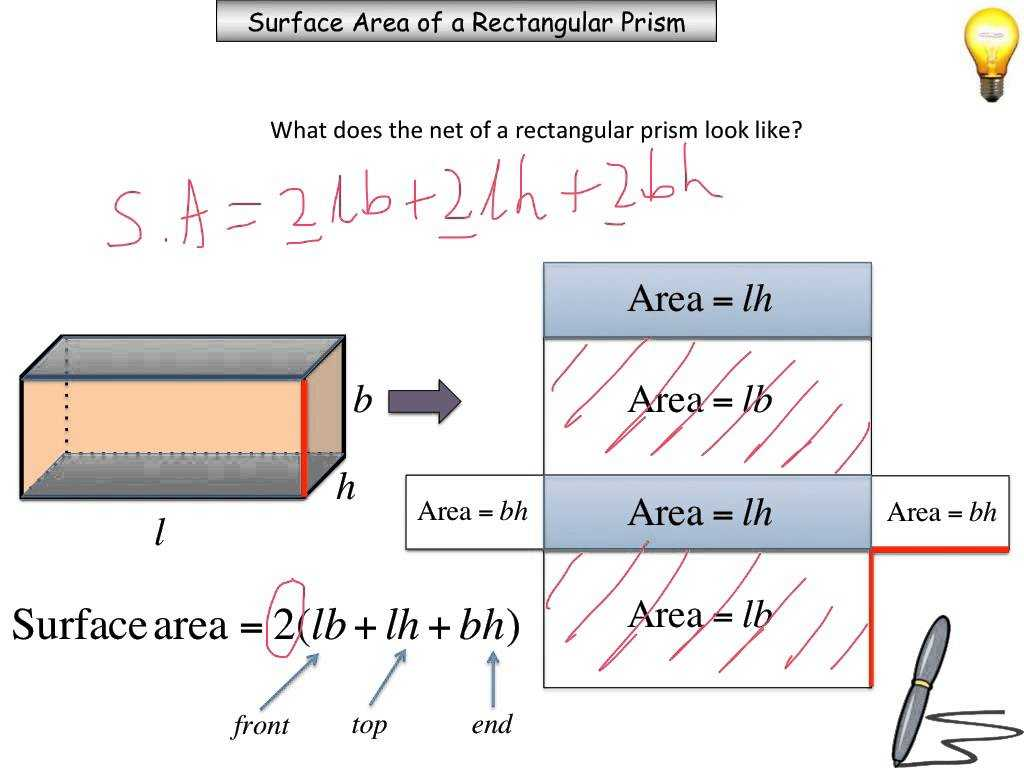 Surface area Worksheet Pdf or Surface area Xpackinfo