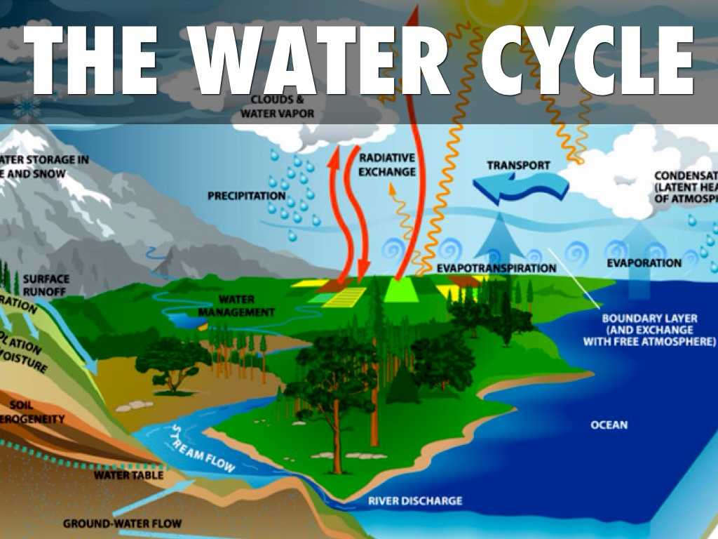 The Water Cycle Worksheet Answer Key Also Sciences Unit 6 by Jramoscudra Sevilla