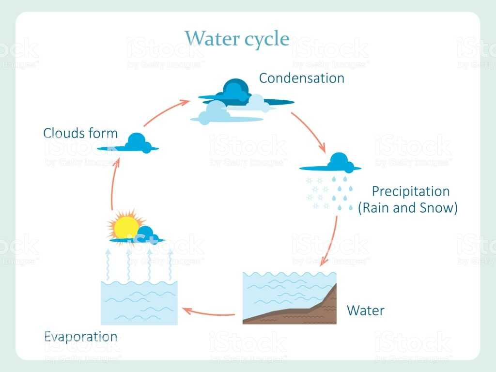 The Water Cycle Worksheet Answer Key or Water Cycle Scheme Stock Vector Art and More Of Blue 83