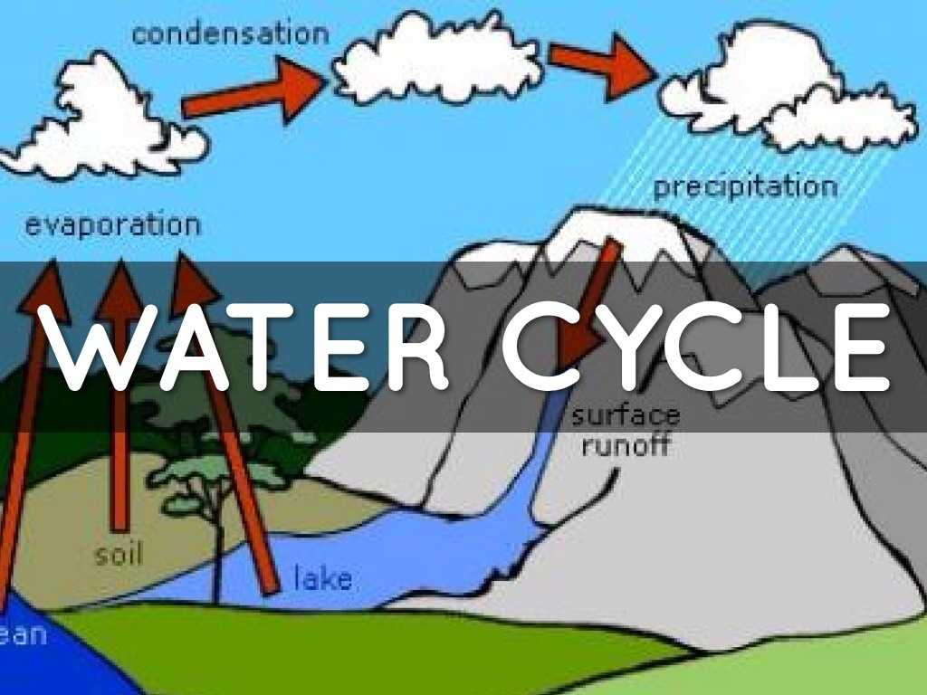The Water Cycle Worksheet Answer Key with Water Cycle by Gabriel Garza by Kaneice