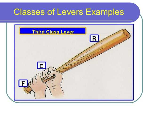 Types Of Levers Worksheet Answers Also Levers