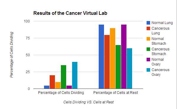 Virtual Lab the Cell Cycle and Cancer Worksheet Answers with Cell Cycle and Cancer Virtual Lab 5 Lon Anthony S Biology Portfolio
