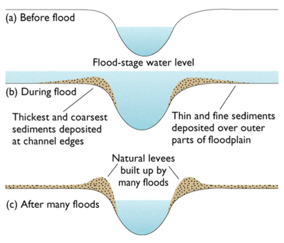 Darwin's Natural Selection Worksheet Answer Key with Greenfieldgeography Floodplain Management