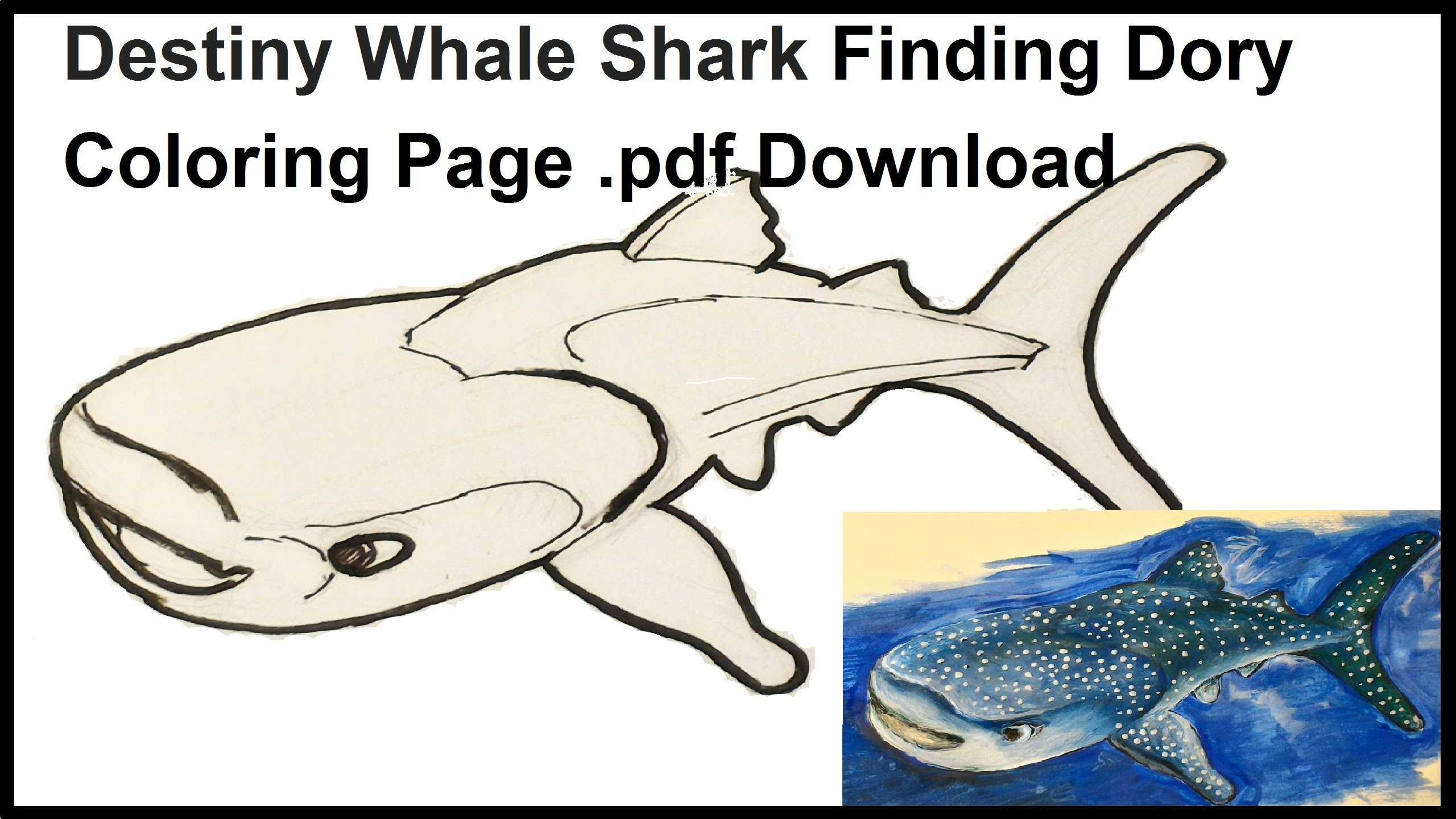 Finding Nemo Worksheet as Well as Whale Shark Coloring Pages