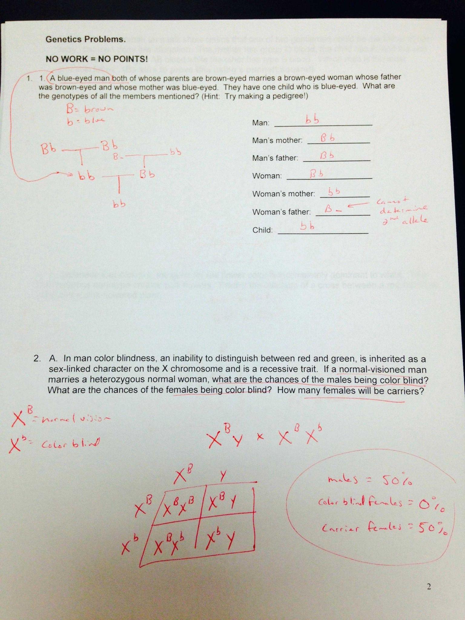 Karyotype Worksheet Answer Key Along With 70 Best Biology