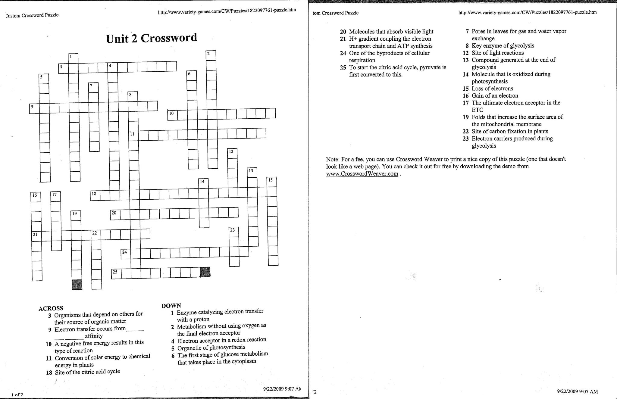Redox Reaction Worksheet With Answers With Crossword