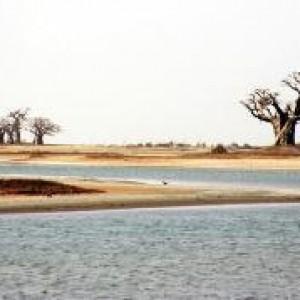 semestafakta-sine-Saloum Delta2