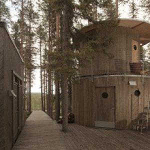 semestafakta-Tree Sauna
