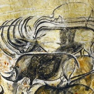semestafakta-Grotte Chauvet