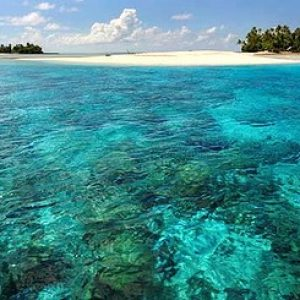 semestafakta-The Phoenix Islands Protected Area kiribati