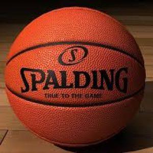 semestafakta-spalding ball