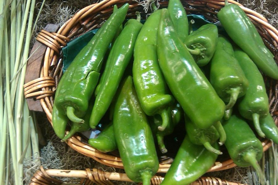 Image result for chilaca pepper