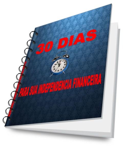 30 DIAS binderlayingopen_550x634