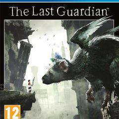 De la nécessité de la trichotillomanie [The Last Guardian, PS4]