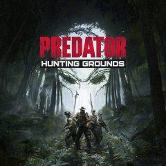 Déprédation [Predator: Hunting Grounds, PC]