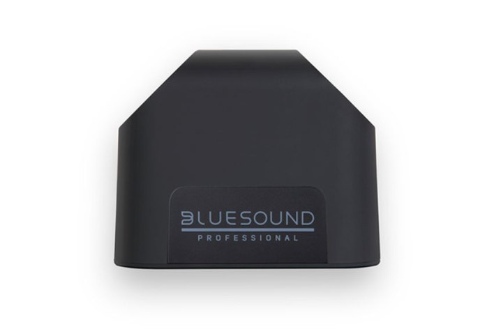 Bluesound Professional BSP125 NetworkStreamingSpeaker 03