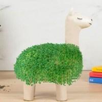 Green Lama Planter - Von weiß zu grün und wieder zu weiß