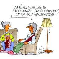 Virale Cartoons - Neuauflage in der Galerie der Komischen Künste