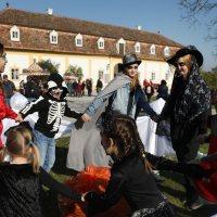 Schloss Hof lädt zum Herbstferien-Programm
