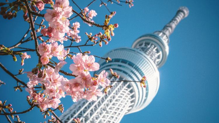 Lo stato di emergenza a Tokyo terminerà ufficialmente lunedì 22 marzo