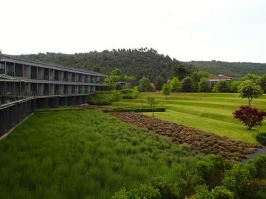 Jardín aromático