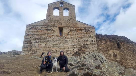 viajar con perro - bowie the dog 09